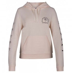 Sweat à Capuche Hurley Combo Swells Guave Ice