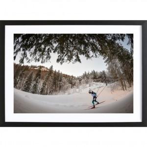 """Poster """"Balade en forêt"""""""